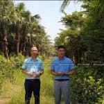 Cây Cọ Da Trơn Loại Cây Được Ưa Chuộng Trong Bố Trí Cảnh Quan Sân Vườn Đẹp