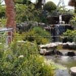 Mẫu Hồ Cá Koi Đẹp Cho Không Gian Sân Vườn Cafe Vườn Ngoài Trời