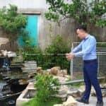 Mẫu Sân Vườn Đẹp Có Hồ Cá Koi Tại Hưng Hà Thái Bình