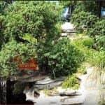 Mẫu Sân Vườn Đẹp Không Gian Xanh Mát Cho Quán Cafe